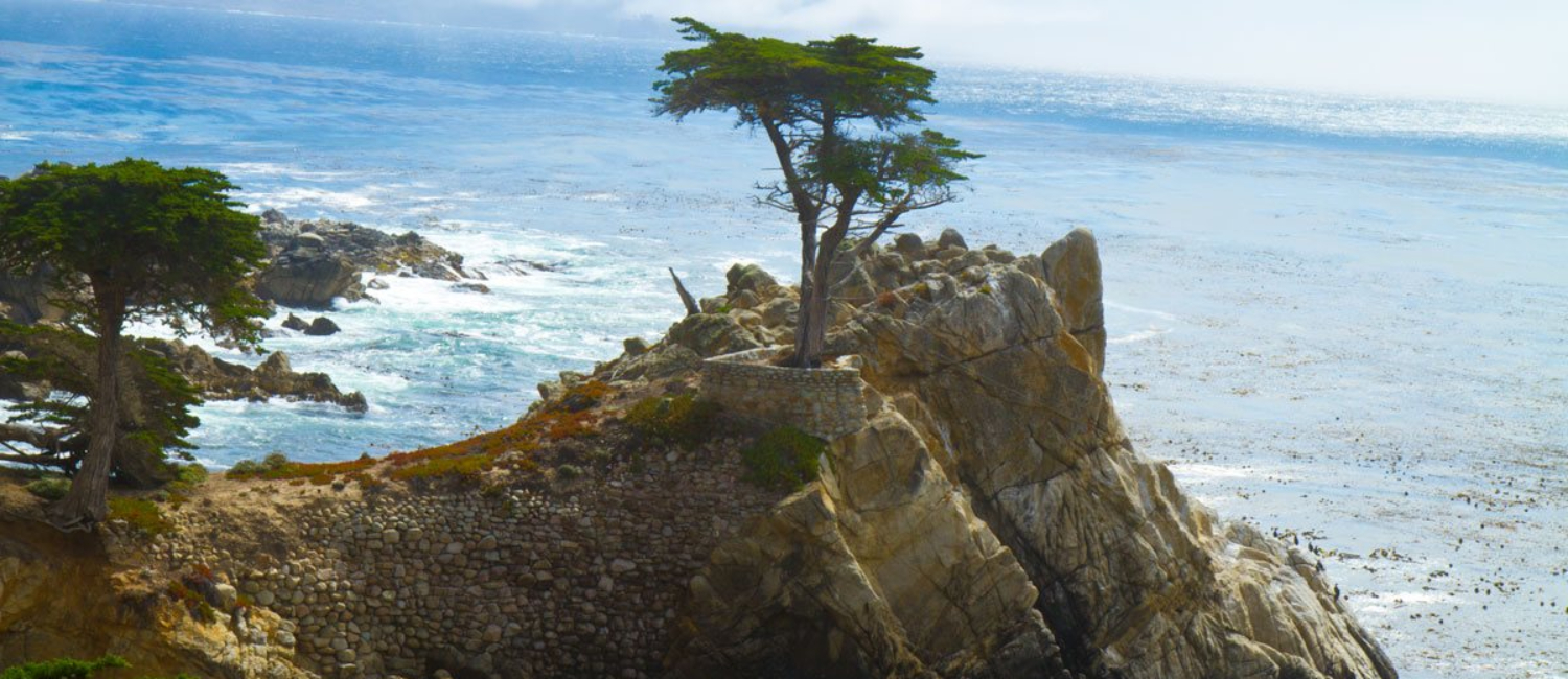 Sightseeing Attractions in Monterey, CA