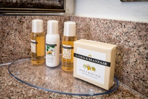 Guest Room Toiletries - Arbor Inn